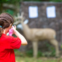 Young girl practcing target shooting with a bb gun at a model deer in the woods